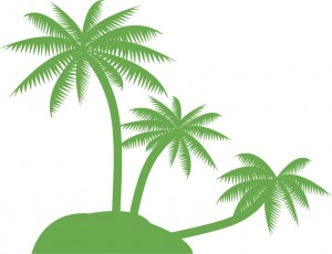 beach-palm-tree-clip-art-3835